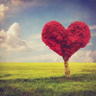 Heart shape red tree in meadow over blue sky